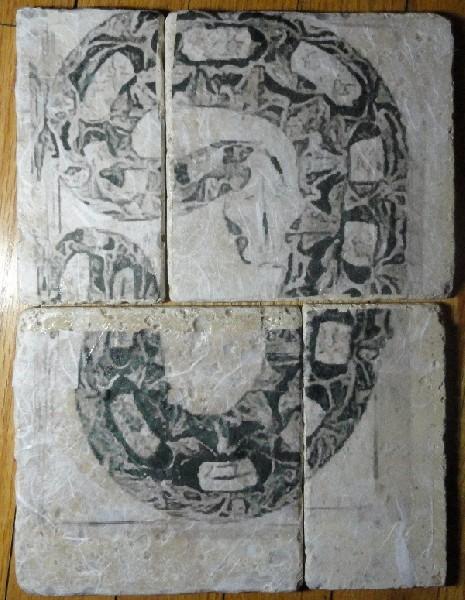 Bitis gabonica mosaic