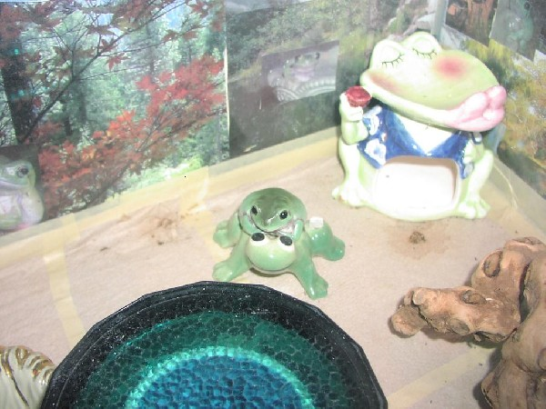 Milkshake on a Ceramic Frog