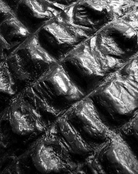 Skin of Steel
