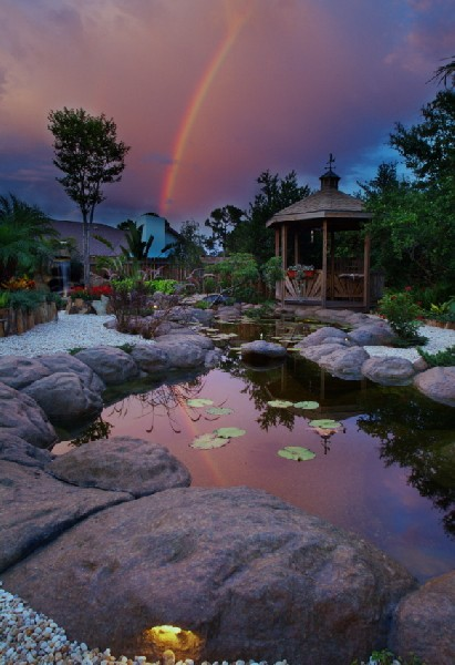My Pond at Dusk after a rain