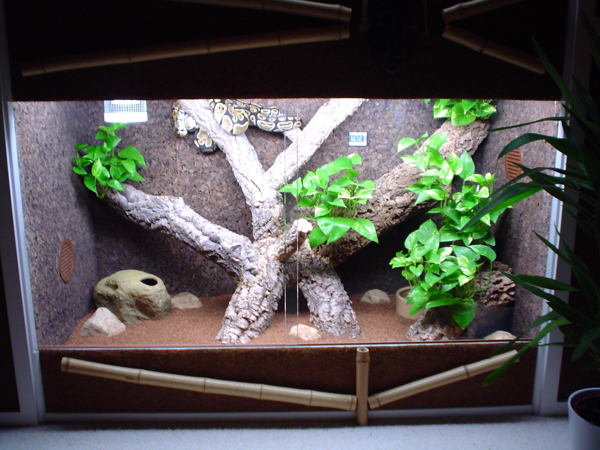 Уютное гнездышко для змеи Статьи 78