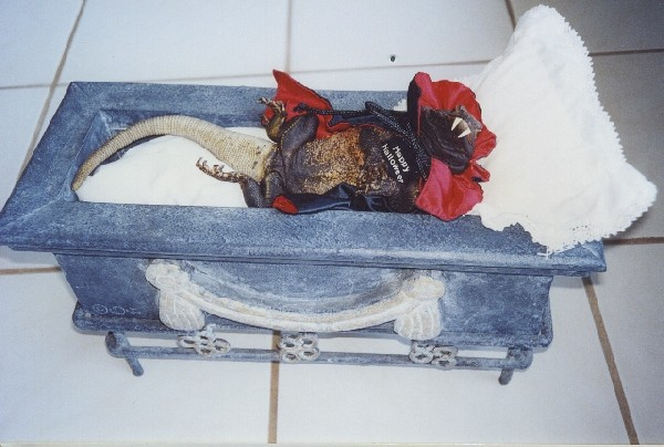 Count Chuckula in coffin