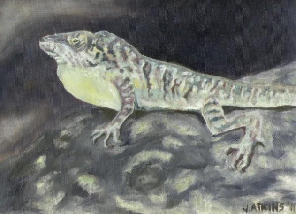 Anole lizard original oil painting