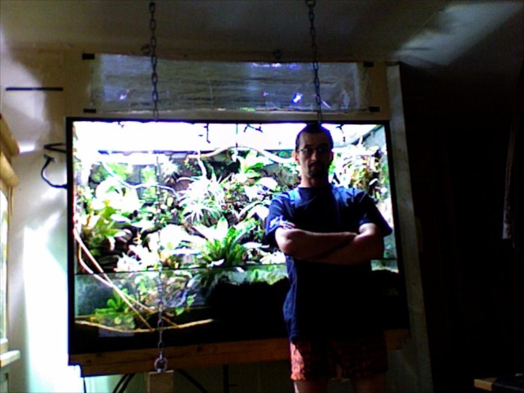 hanging paludarium