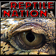 Reptile Nation