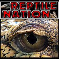 Reptile Nation