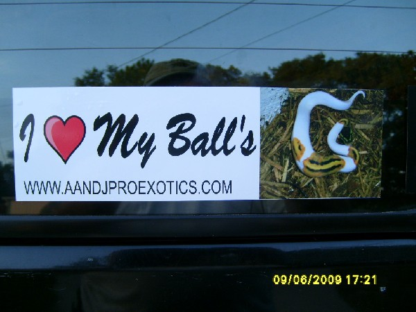 I love my Balls