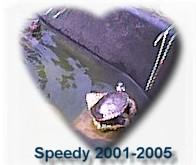 speedy memorial