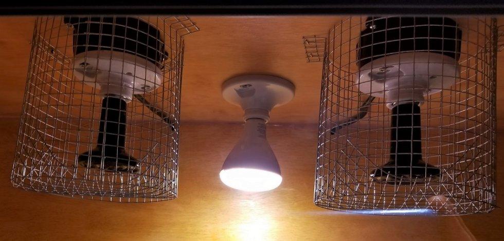 Bulb Guards