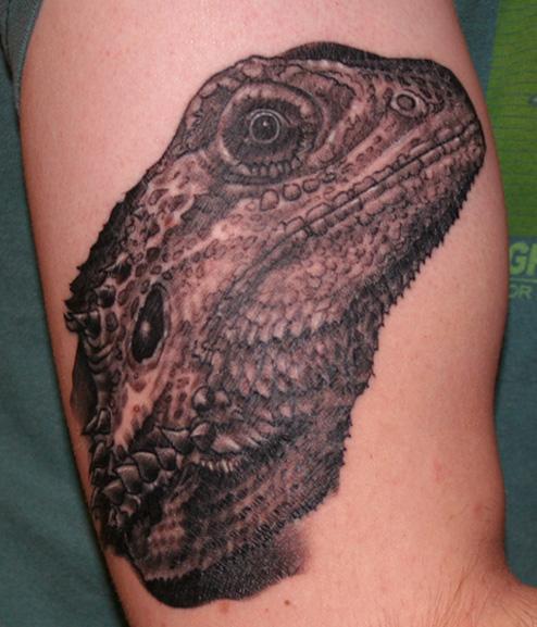 Steady Tattoo Minneapolis - LiLz.eu - Tattoo DE