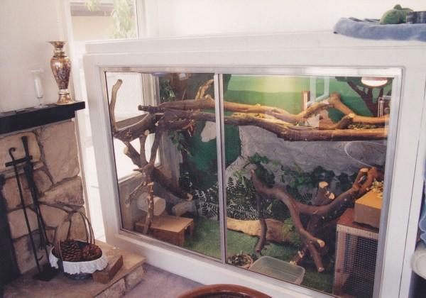 Reptile Furniture