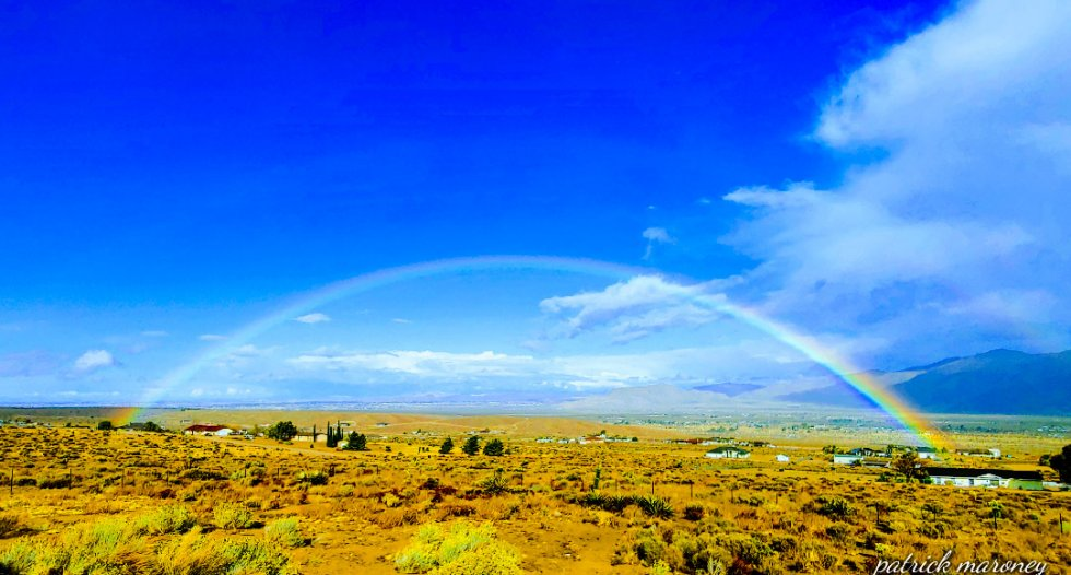 Beauty of the High Desert