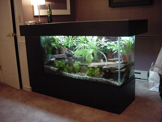 turtle tank setup - Large Turtle Tanks for Sale 2017 - Fish Tank ...