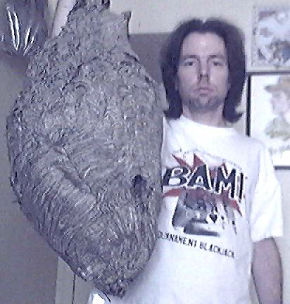 "ENORMOUS BALD-FACED ""HORNET"" NEST"