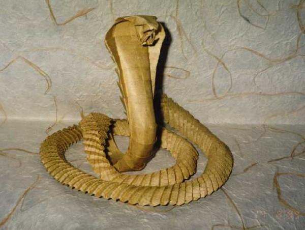 Rare Origami Cobra