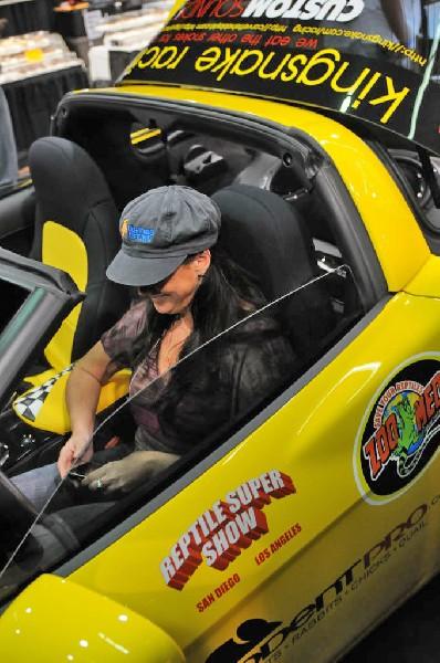 kingsnake racing at NARBC Anaheim Show 2009