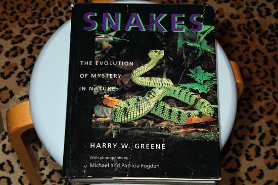 SnakesGreeneJan15