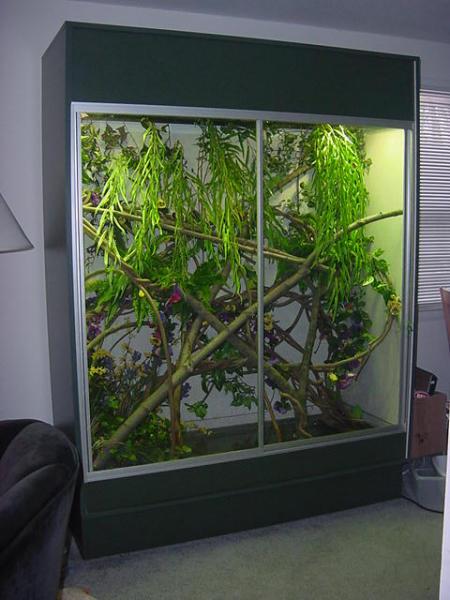 Kingsnake Com Photo Gallery Cages Terrariums Ponds Aquariums