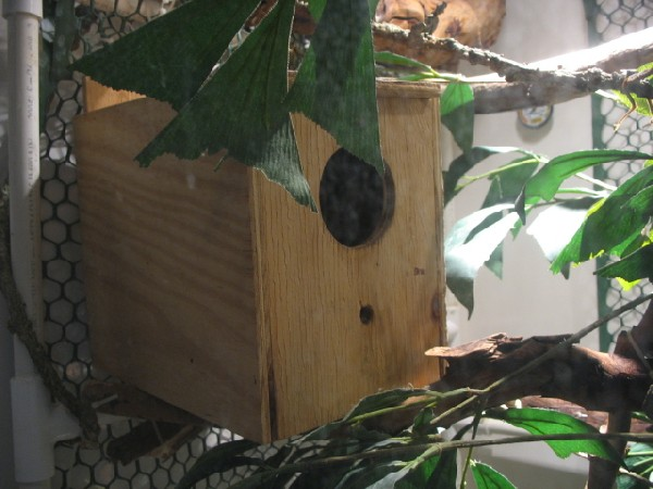 TreeMonitor Enclosure
